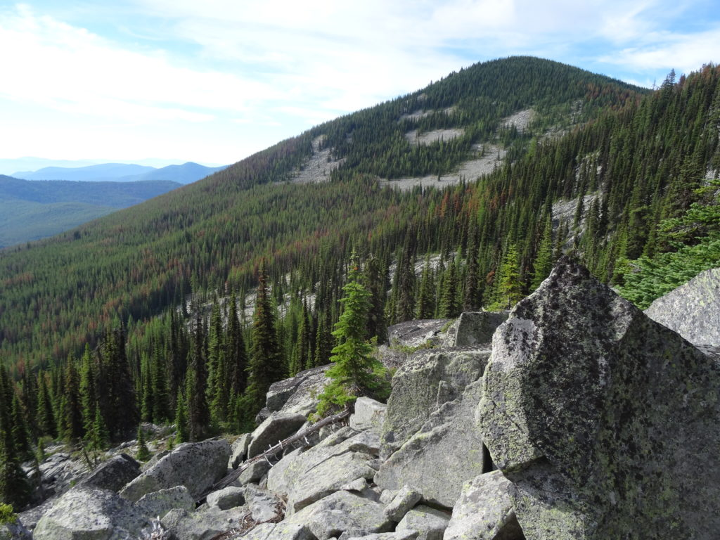 Sherman Pass in the Kettle River Range