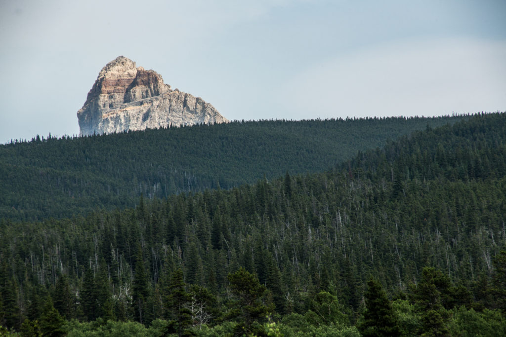 Chief Mountain in Glacier National Park