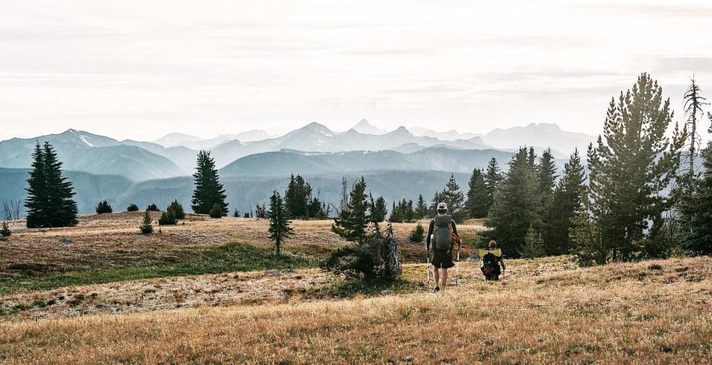 Okanogan National Forest