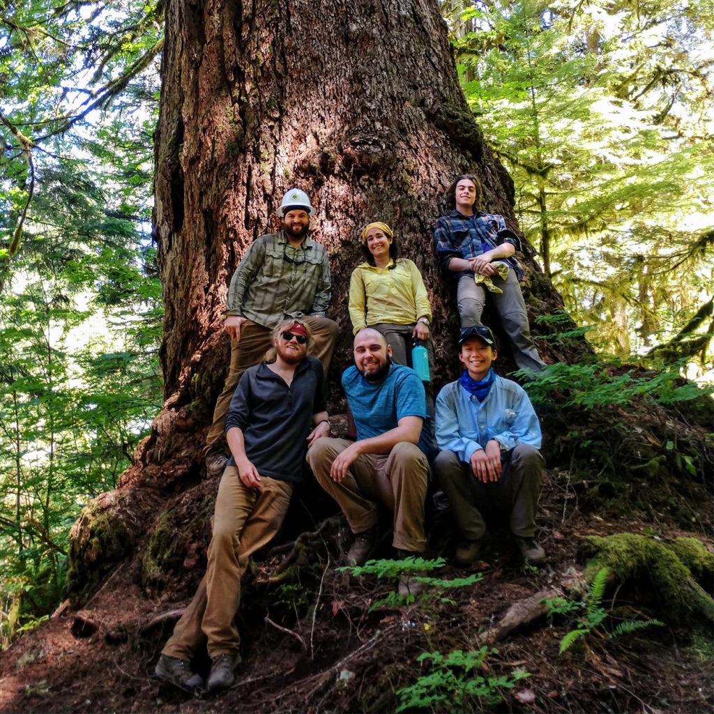 Meet Cat, Thomas, Erica, Nate, Jake and Chris! This trail crew has had a busy season with projects that took them high along the Cascade Crest, where they worked to repair damage from the Holman Fire — and to the lush temperate rainforests of the North Cascades on the Mt Baker-Snoqualmie National Forest.