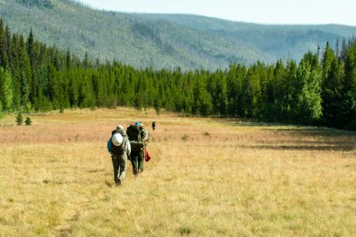 The crew hikes from the old Pasayten Airstrip to the next worksite on the Boundary Trail in the Pasayten Wilderness. Photo by Michael Sawiel.