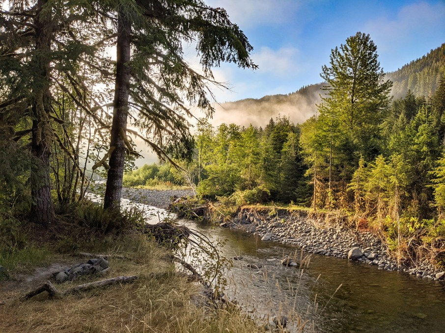 Bogachiel River Trail