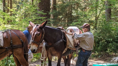 Larry Basinger Loading Saddle Bag