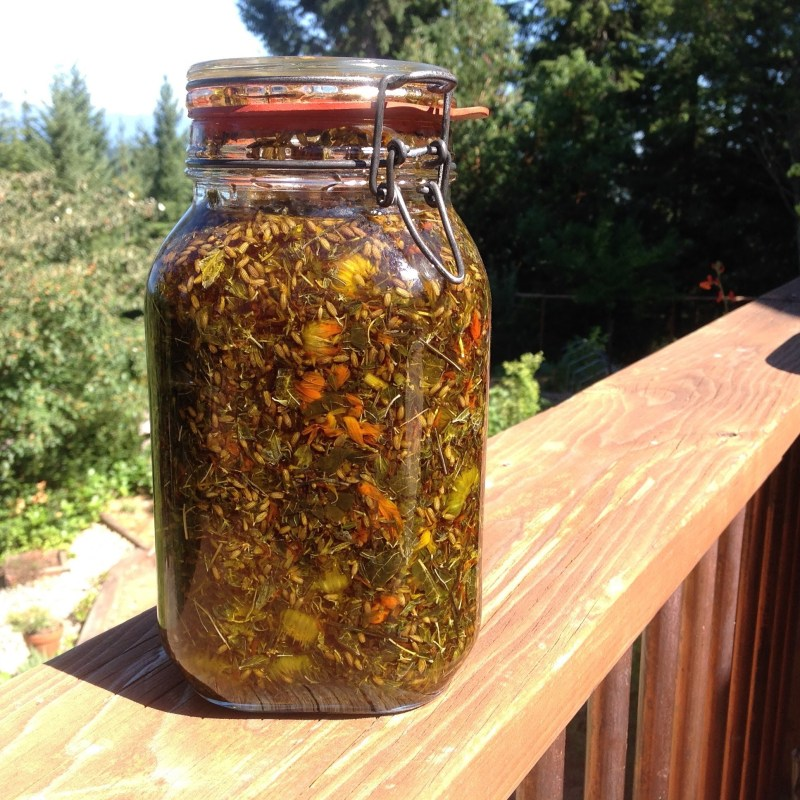 Herbal Infused Olive Oil from the PNW from Scratch Garden