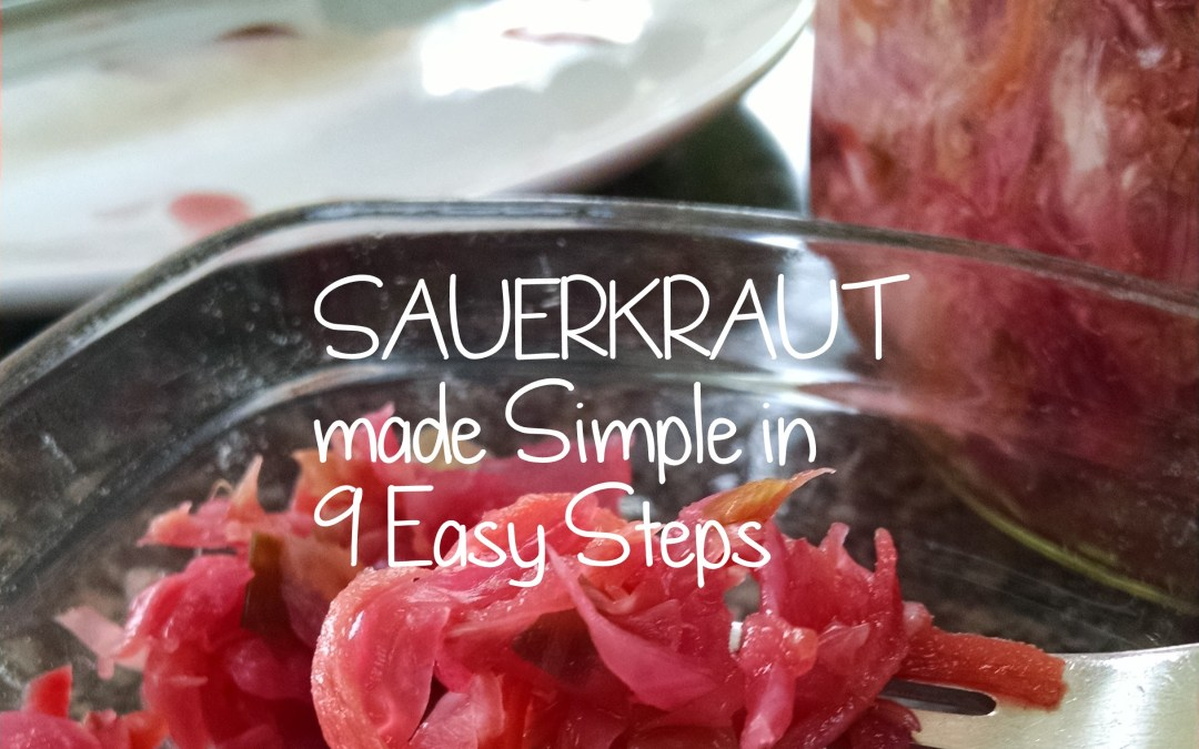 Easy Sauerkraut Recipe: Sauerkraut made Simple in 9 Easy Steps