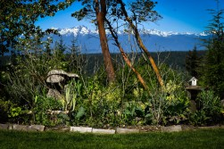 May in the PNWfromScratch Garden 2016_6