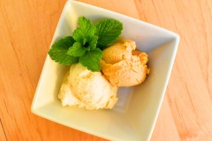 Ginger Apricot Rhubarb Sorbet (How to Make 'Any Fruit' Sorbet)