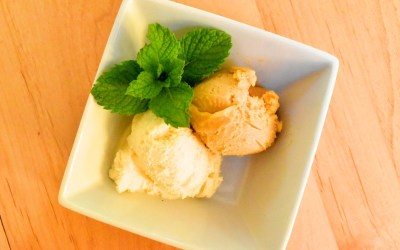 Ginger Apricot Rhubarb Sorbet (How to Make 'Any Fruit' Sorbet)