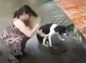 【閲覧注意】おばちゃん、近所のムカつく犬の足を切断!