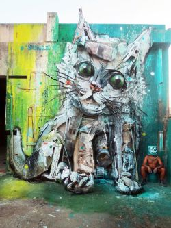 bordaloII_cat_facebook