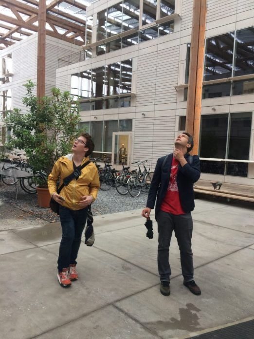 Exploring urban sustainability in Germany