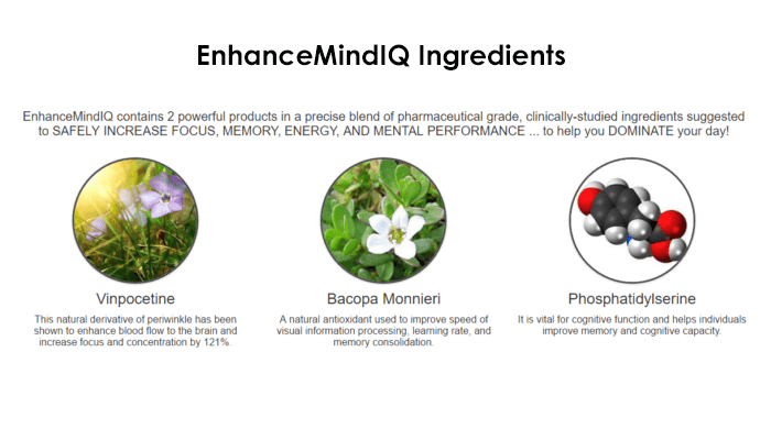 Enhanced Mind IQ Ingredients