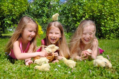 Image result for chicks children
