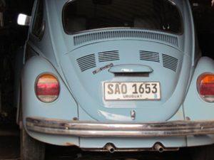 Jose Mujica's Beetle