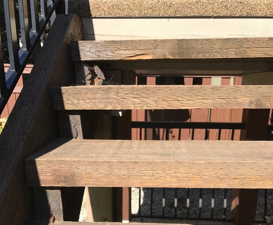 Treated Wood Don T Take Short Cuts Treat Your End Cuts   Lowes Pressure Treated Stair Treads   Railing   Stair Risers   Treated Lumber   Treated Wood Stair   Deck Stairs