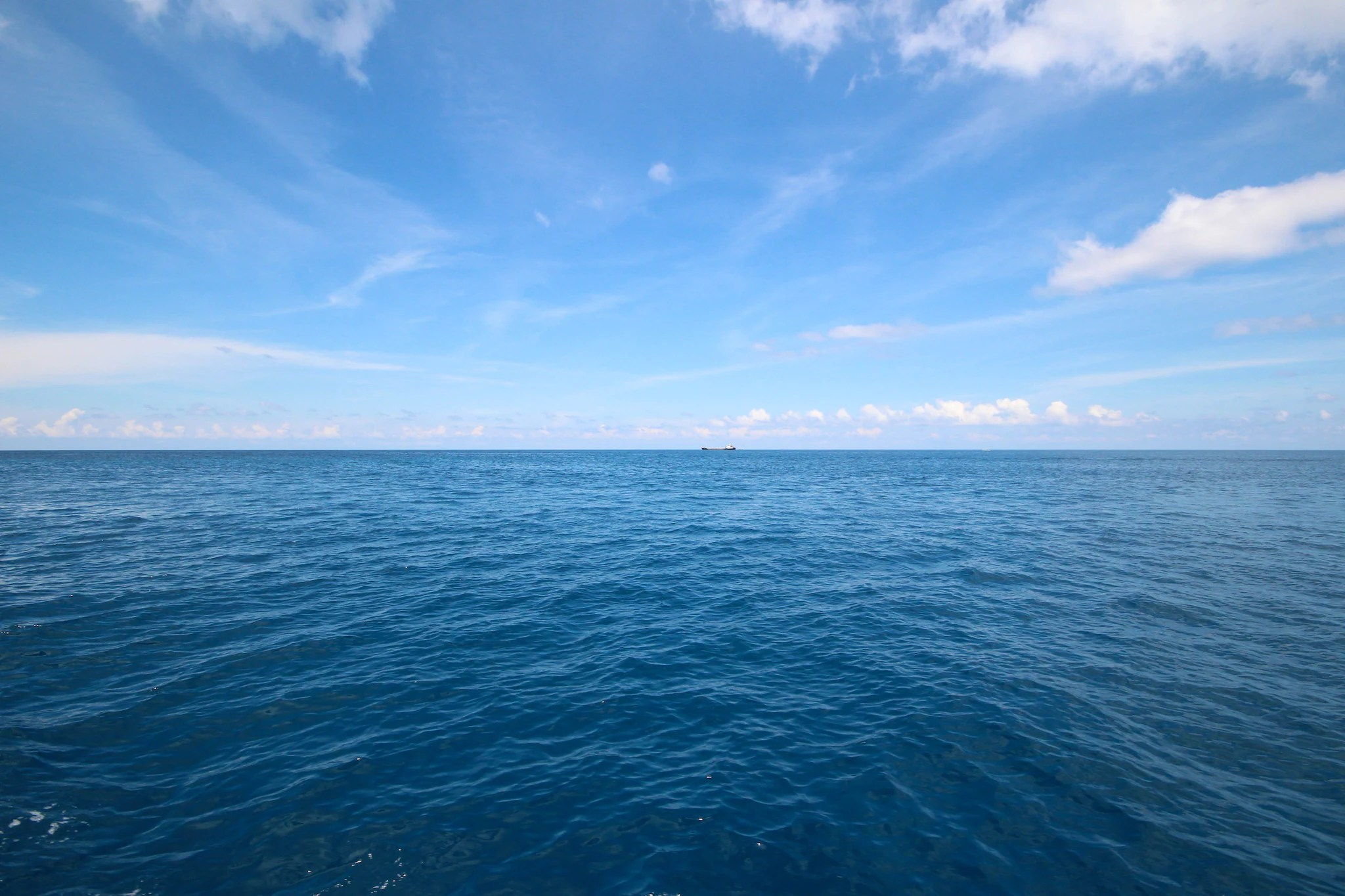 Cruise And Cross The International Date Line