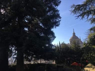 podas monasterio del Escorial
