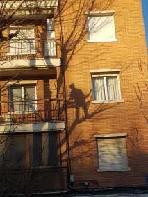 sombra poda