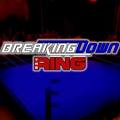 Breaking Down the Ring 03-22-2017