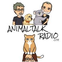 Animal Talk – Did my dog just train me – Episode 39