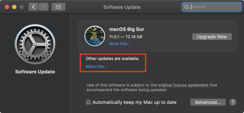 02 Software Update other updates More info