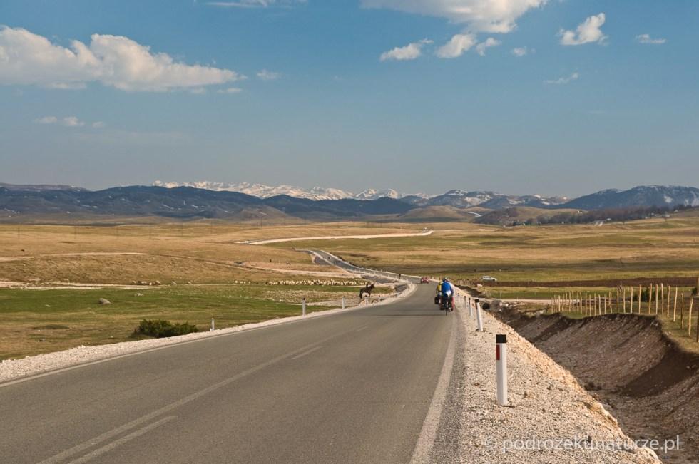 Droga z Żabljaka w kierunku Tušiny