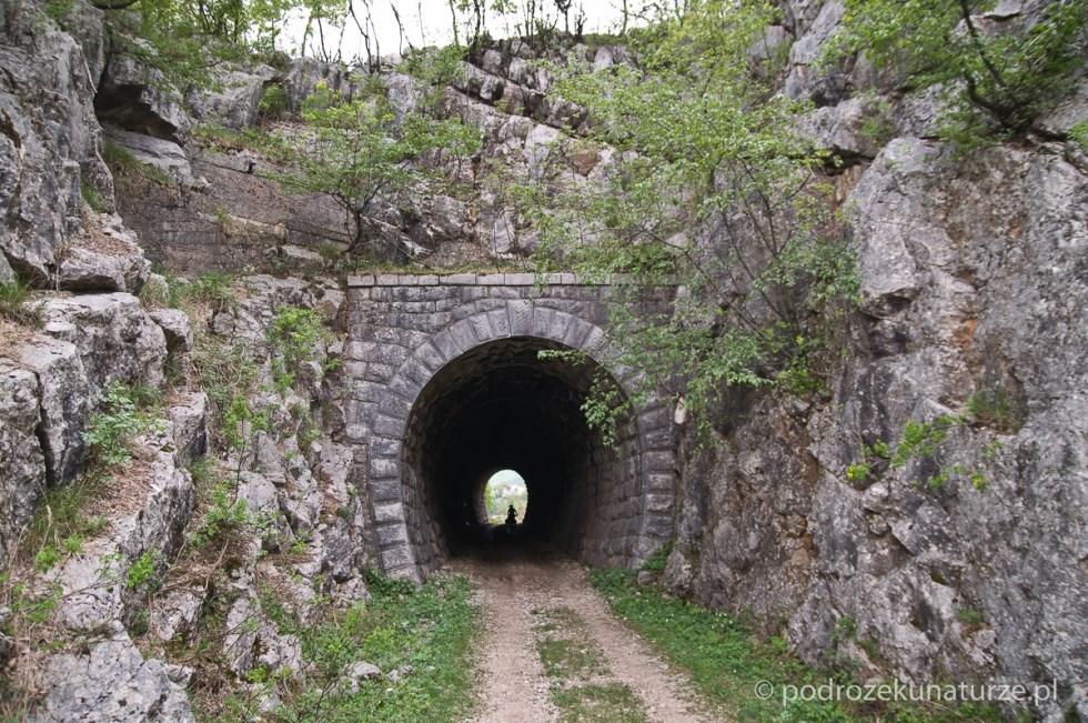 Nieczynna trasa kolejowa z Nikšića do Trebinje