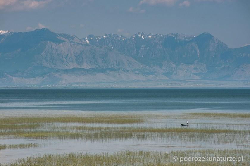 Góry Prokletje zdają się wyrastać z jeziora Szkoderskiego