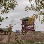 Wieża widokowo obserwacyjna nad jeziorem Zgierzynieckim