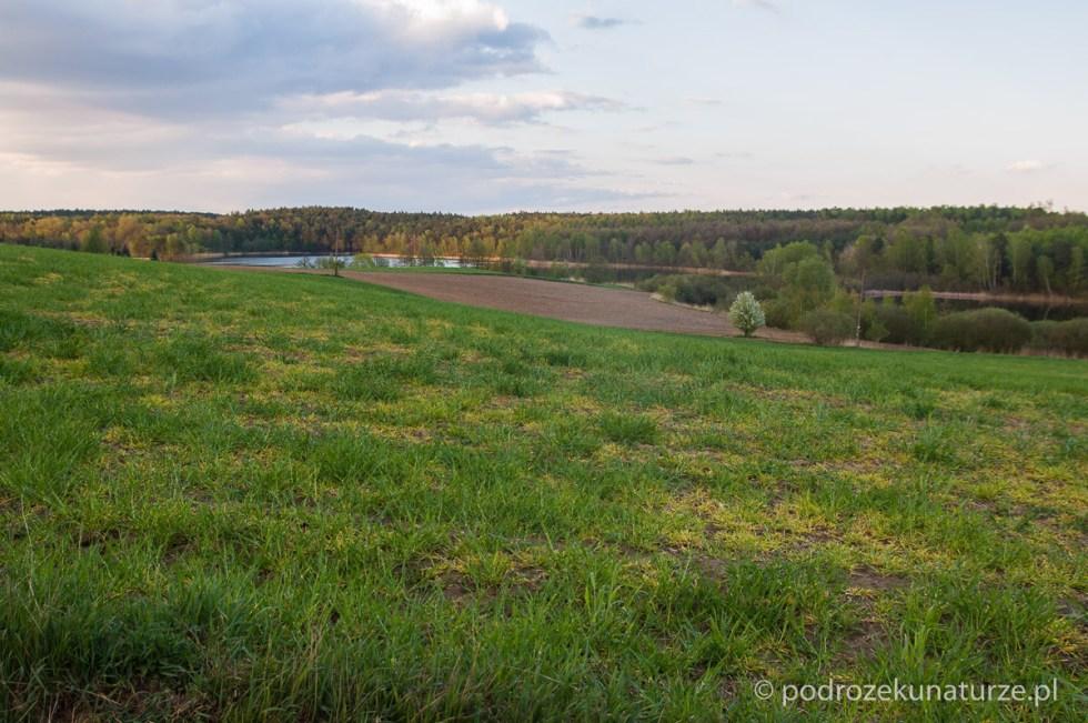 Nad jeziorem Pniewskim