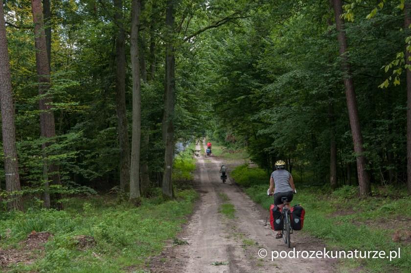 W Brodnickim Parku Krajobrazowym