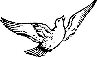 My Upanishadic Birdie Pie 9 Poem by Dr. Geeta Radhakrishna
