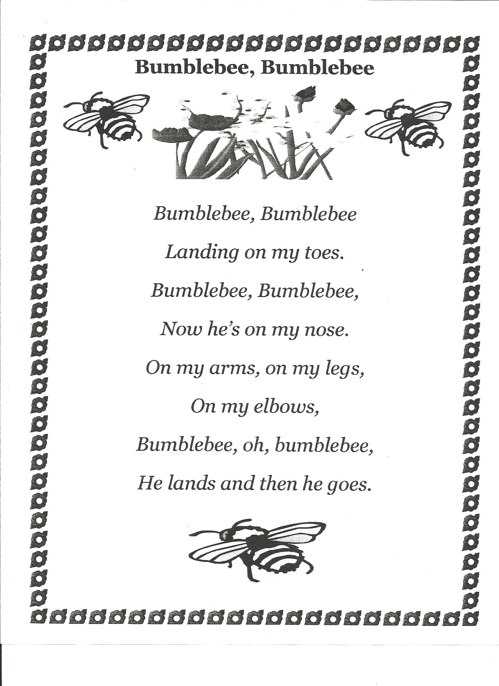 Insects Poems