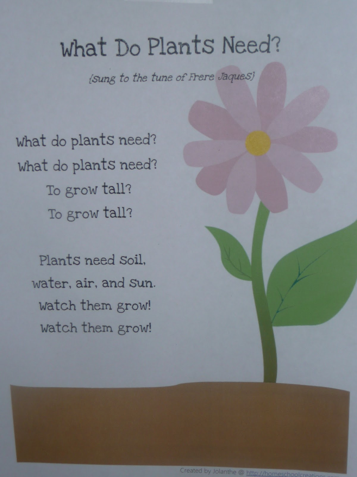 Plants Poems