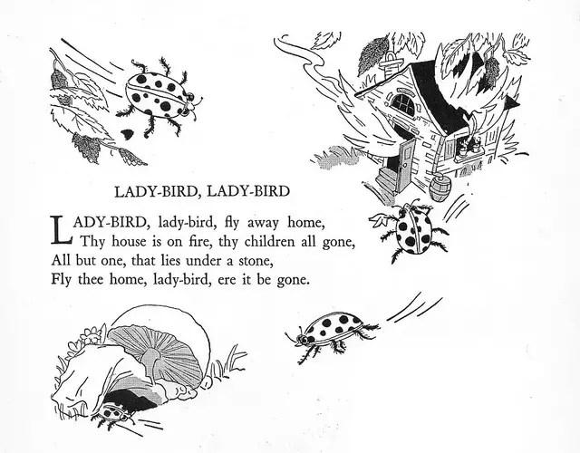 Ladybird Poems