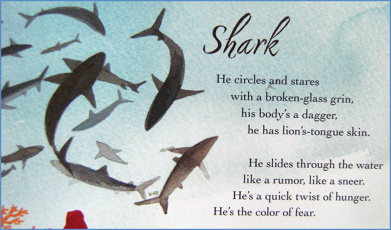 Shark Poems