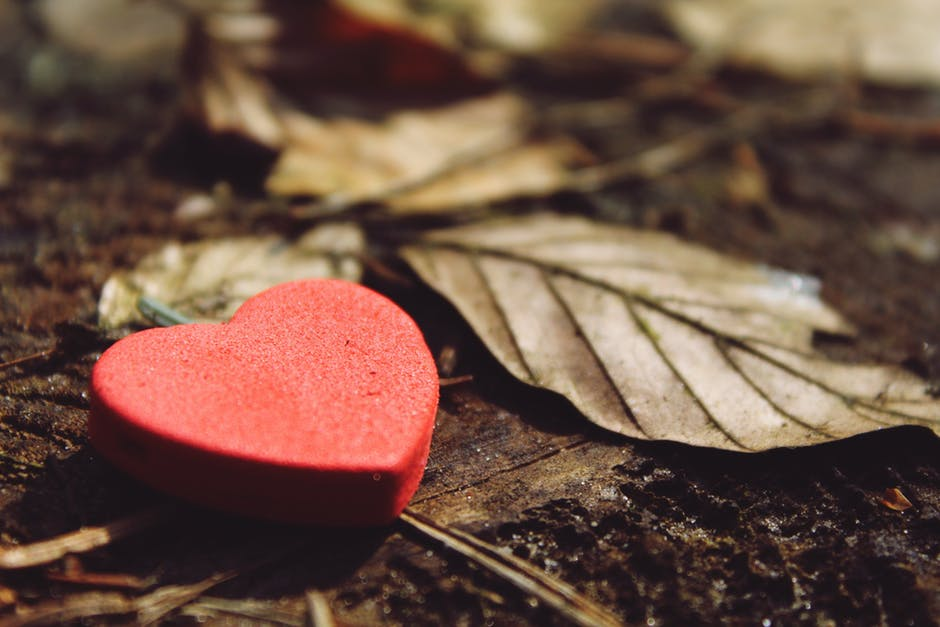 Dry land   Love Poems   Poems about life   Sad poetry