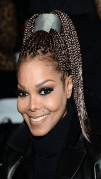 Hairstyles For The Janet Jackson Braids ...