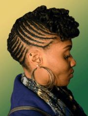 hottest natural hair braids styles