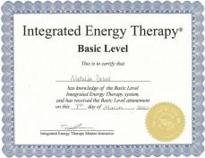 Natalie Dekel - Integrated Energy Thetapy