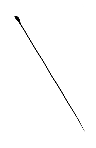 Portrait of a line, Ink 3 - © Gil Dekel