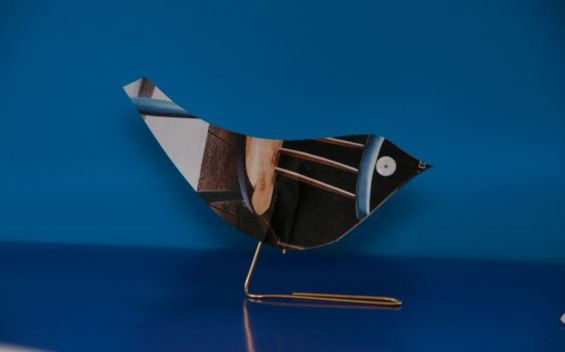 Bird Craft - Gil Dekel