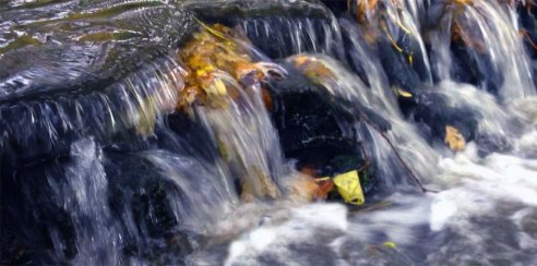 Water of life - Gil Dekel. River flow.
