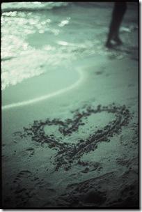 moonlit love