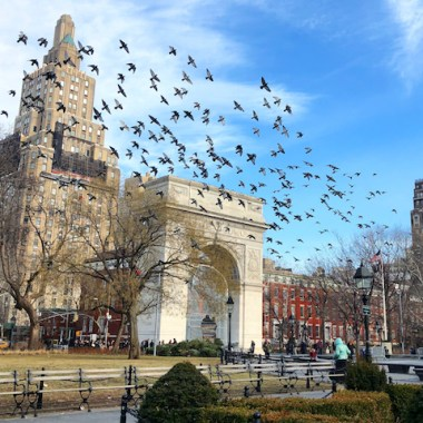 Washington Square Park NYC