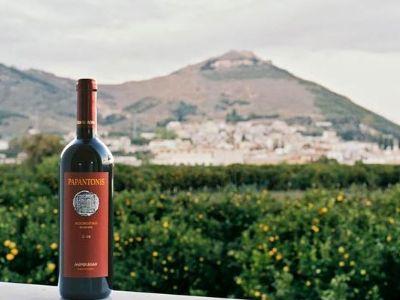 Papantonis Winery   Peloponnese wines   The Vineyards of Peloponnese   Peloponnese Wine Region   Peloponnese Wine Roads   Wines and Grape Varieties of Peloponnese   Peloponnese wineries   Wines from the Peloponnese