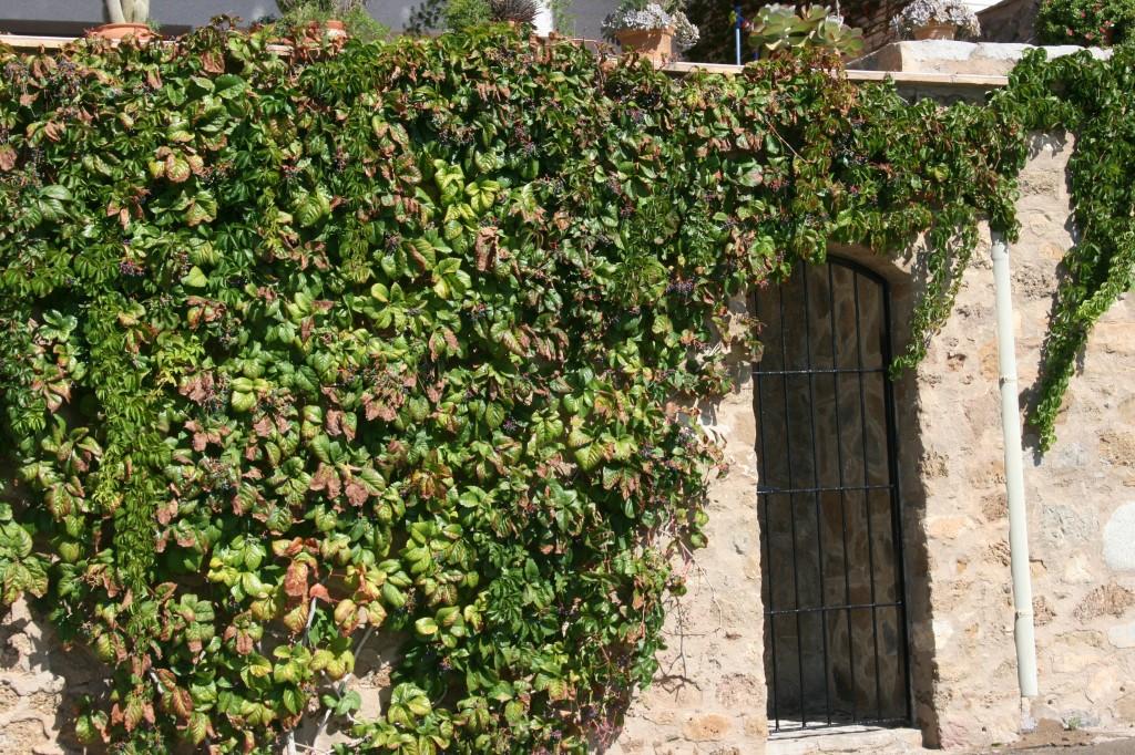 L'Estartit, Costa Brava, Spain