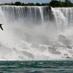 Summer Travel to Niagara Falls with Radisson