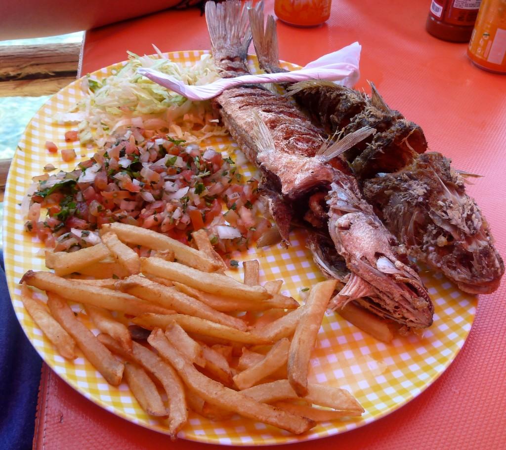 Fish in Puerto Penasco, AKA Rocky Point, Mexico