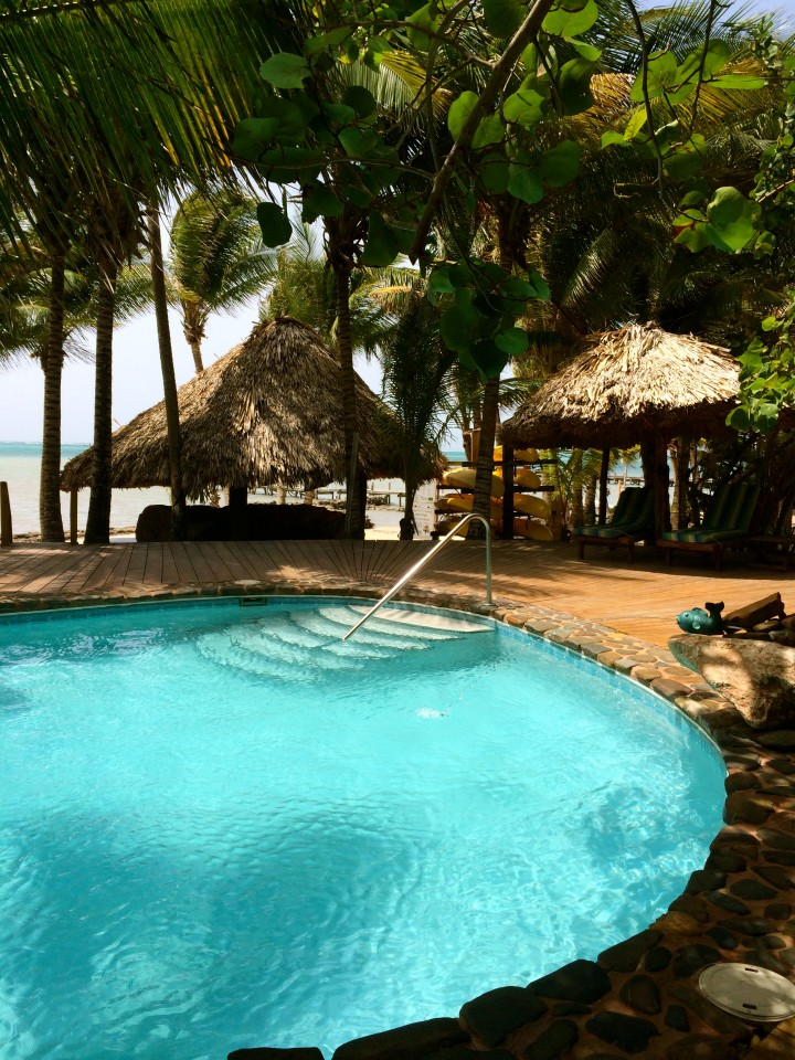 kitchen island and carts hotel room with xanadu resort, ambergris caye, belize